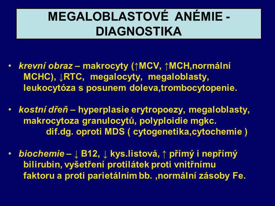 MEGALOBLASTOVÉ ANÉMIE - DIAGNOSTIKA