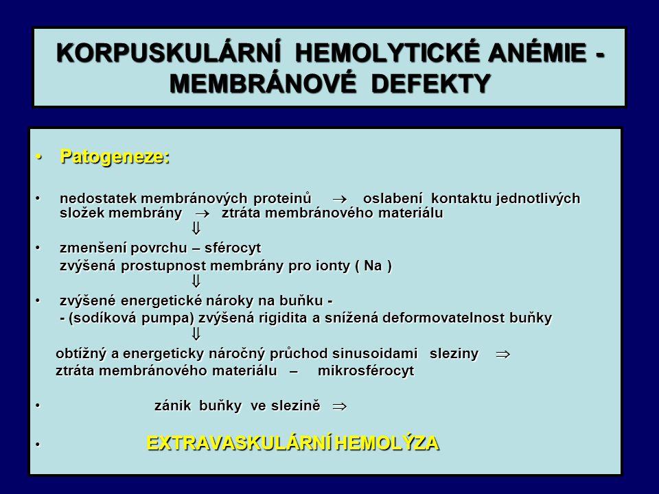 KORPUSKULÁRNÍ HEMOLYTICKÉ ANÉMIE - MEMBRÁNOVÉ DEFEKTY