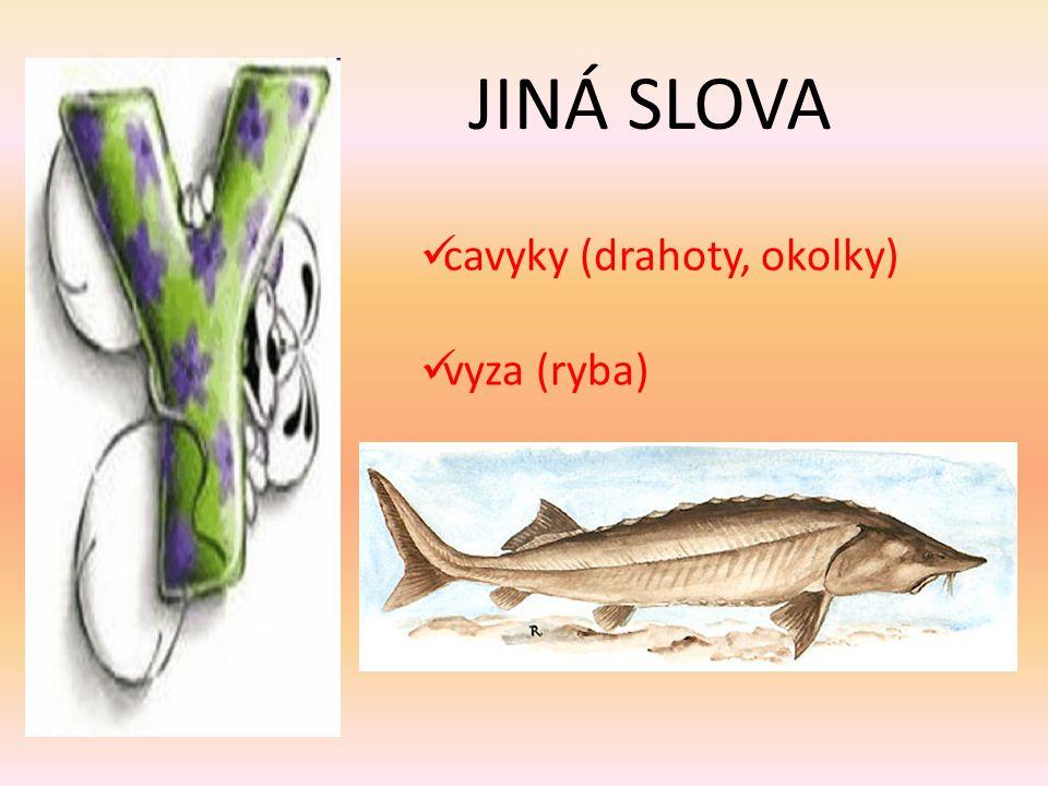 JINÁ SLOVA cavyky (drahoty, okolky) vyza (ryba)