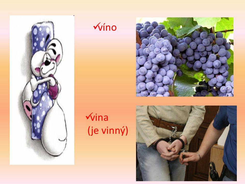 víno vina (je vinný)
