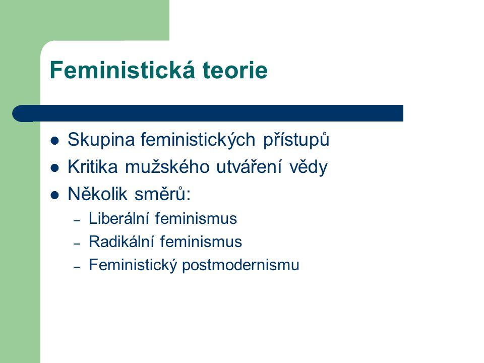 Feministická teorie Skupina feministických přístupů