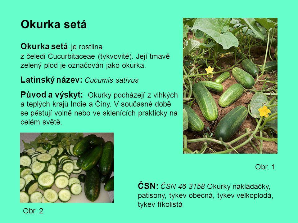 Okurka setá Okurka setá je rostlina z čeledi Cucurbitaceae (tykvovité). Její tmavě zelený plod je označován jako okurka.
