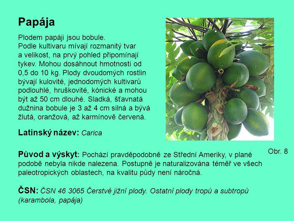 Papája Latinský název: Carica