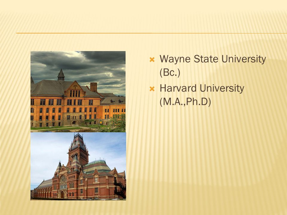 Wayne State University (Bc.)