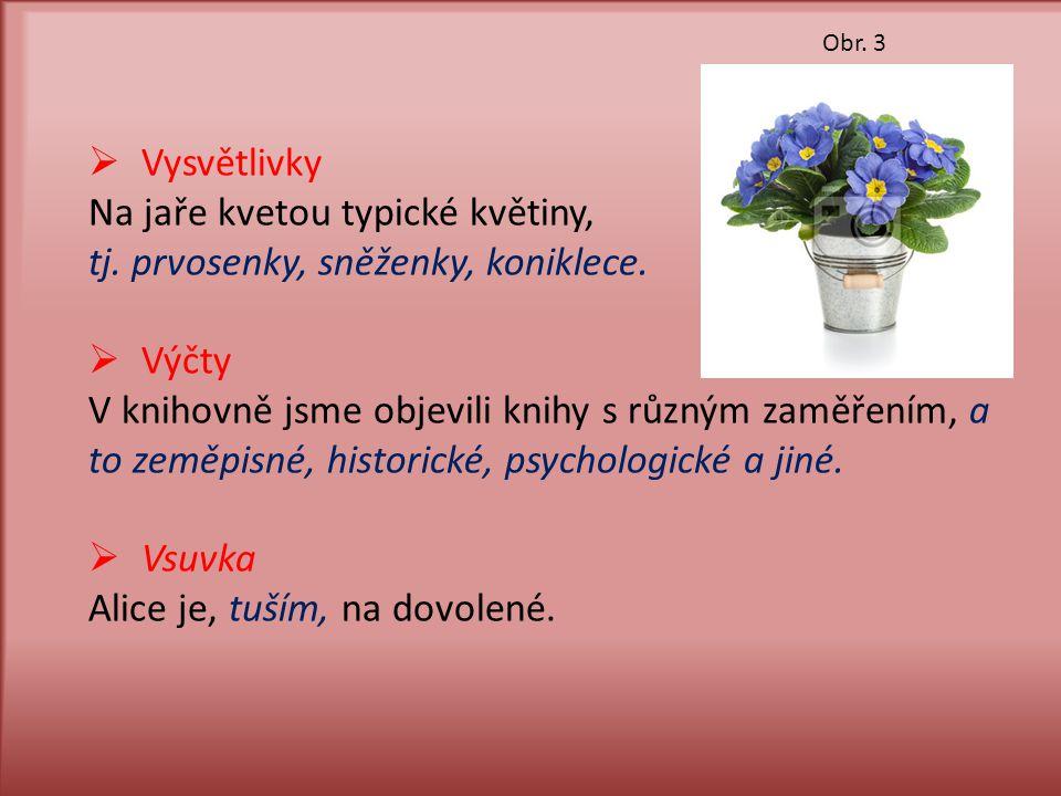 Na jaře kvetou typické květiny, tj. prvosenky, sněženky, koniklece.
