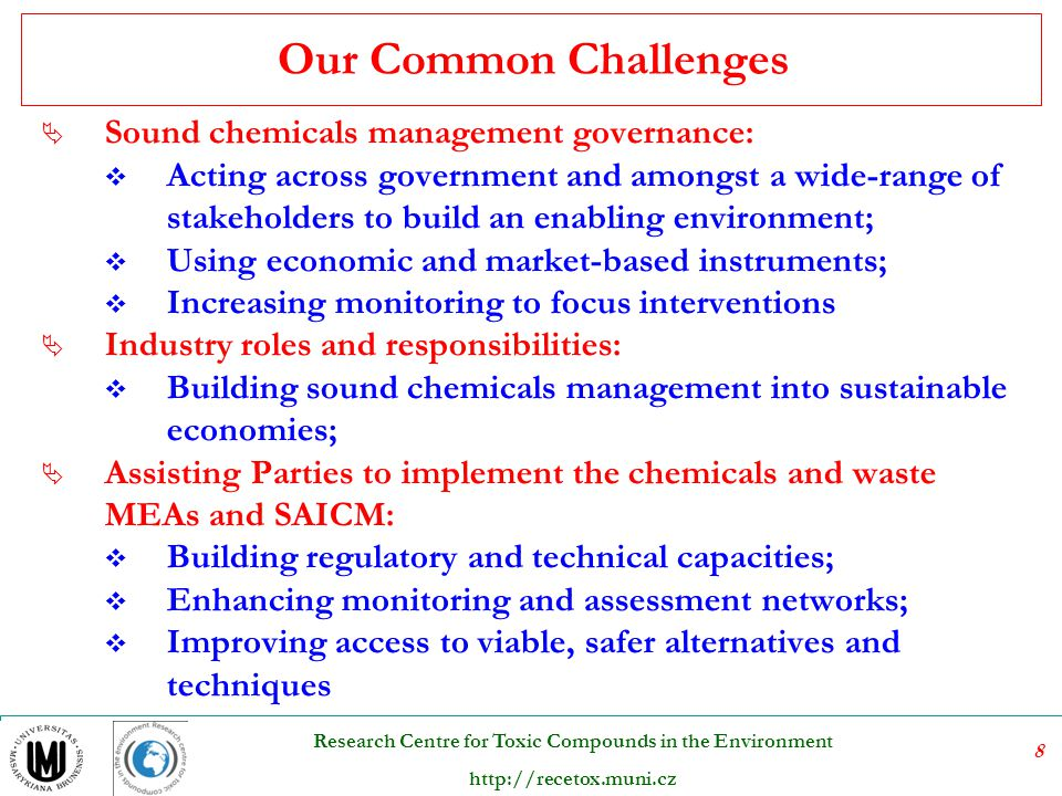Our Common Challenges Sound chemicals management governance: