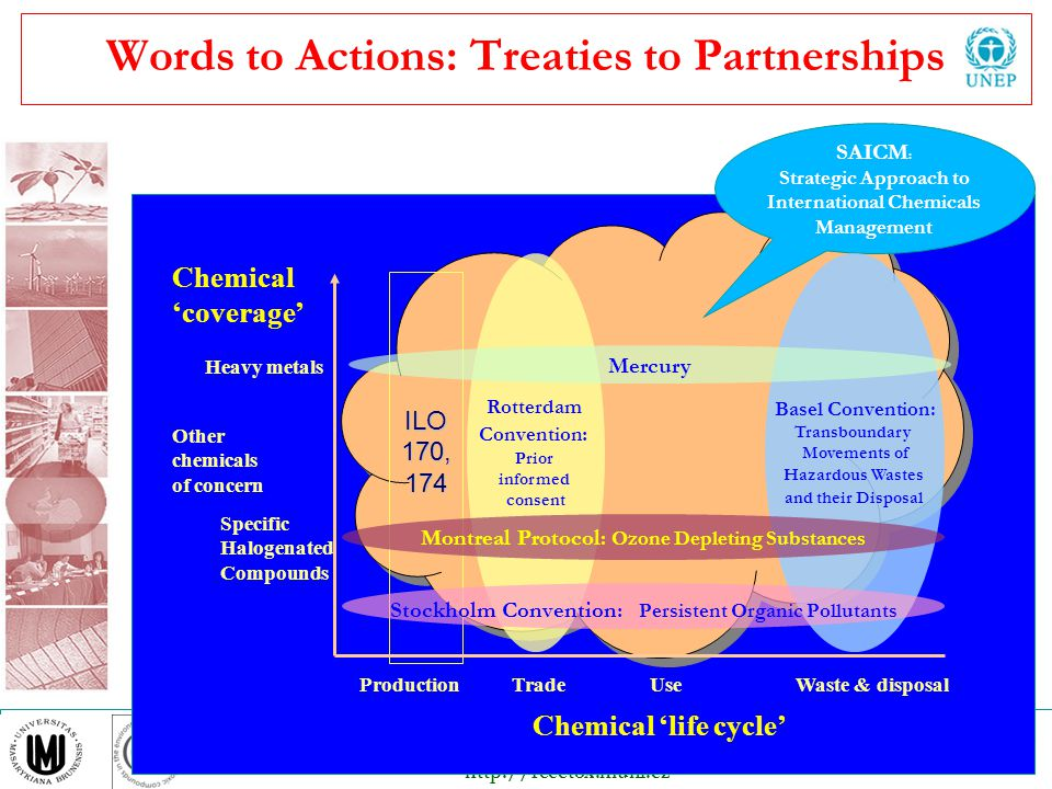 Words to Actions: Treaties to Partnerships