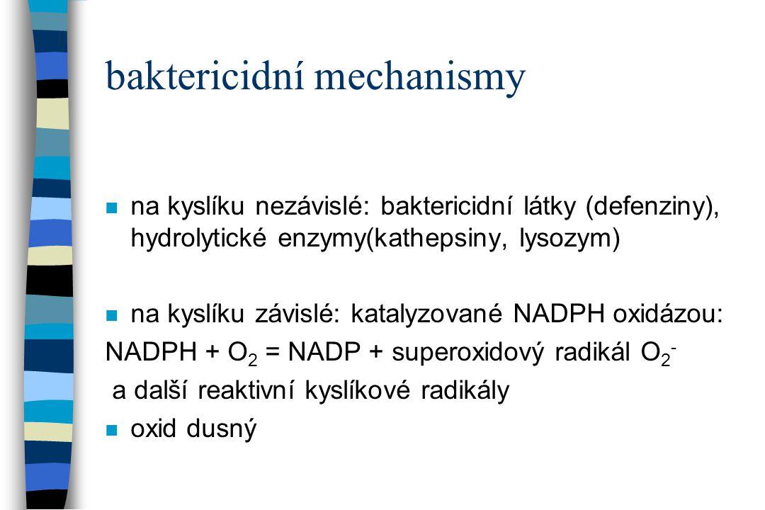 baktericidní mechanismy