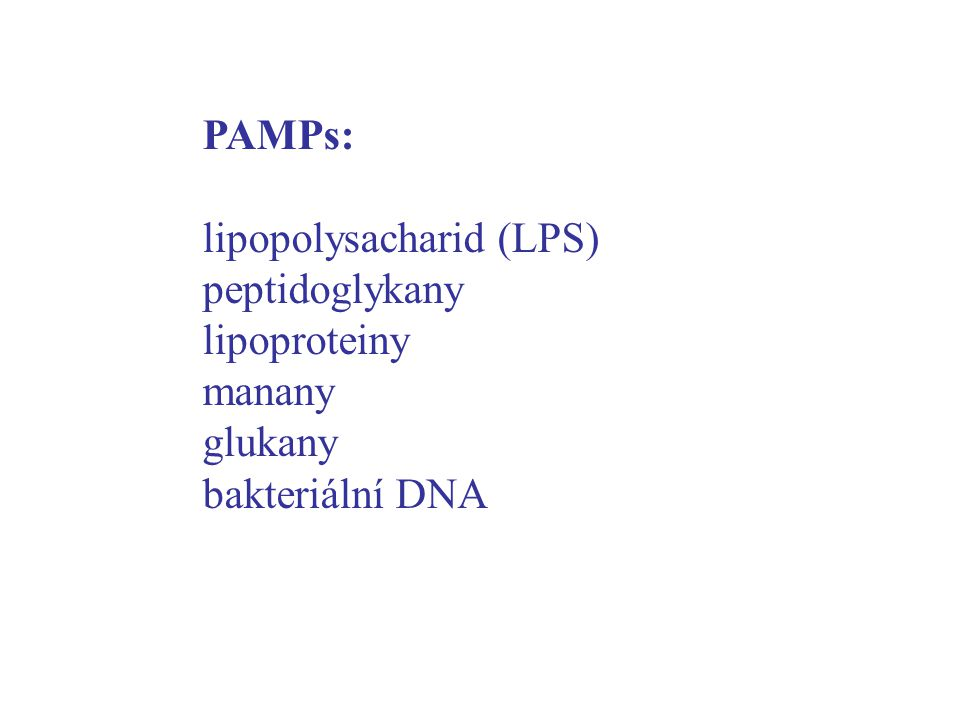 PAMPs: lipopolysacharid (LPS) peptidoglykany lipoproteiny manany glukany bakteriální DNA