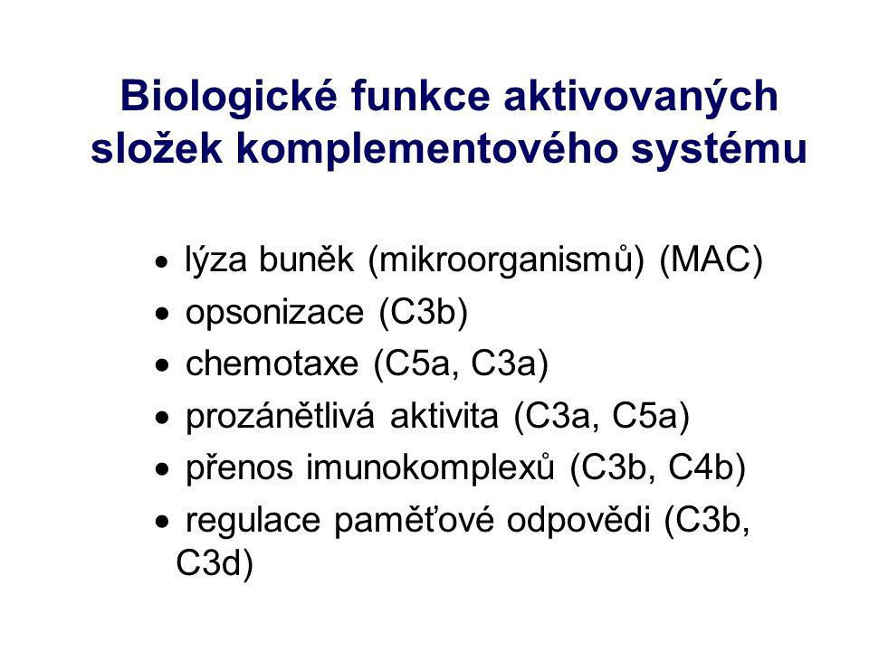 Biologické funkce aktivovaných složek komplementového systému