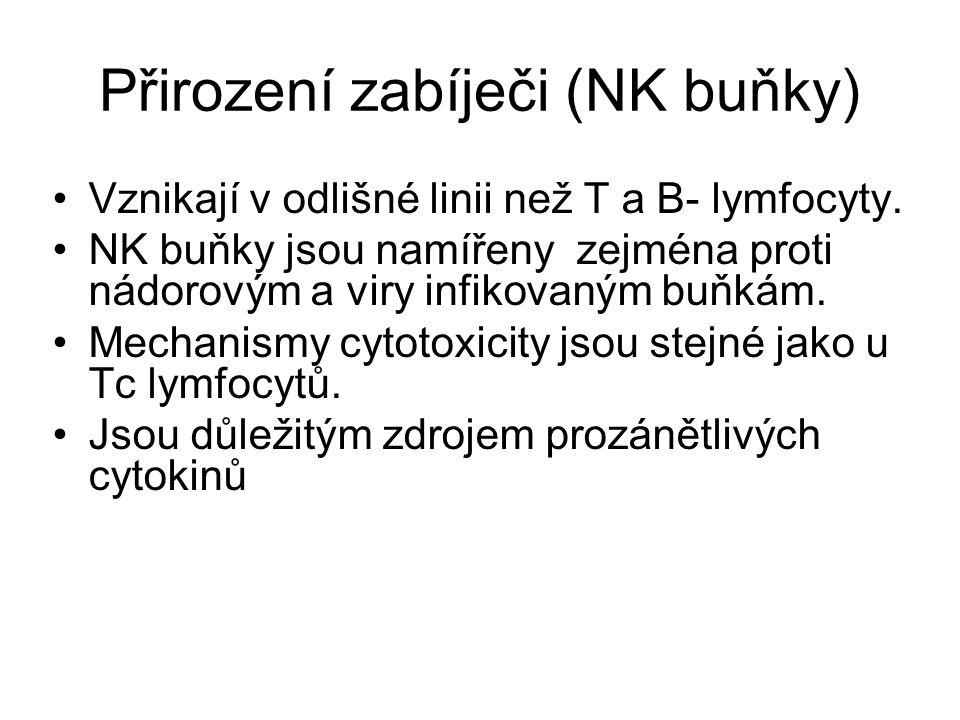 Přirození zabíječi (NK buňky)