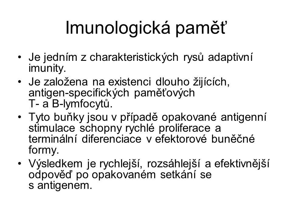 Imunologická paměť Je jedním z charakteristických rysů adaptivní imunity.