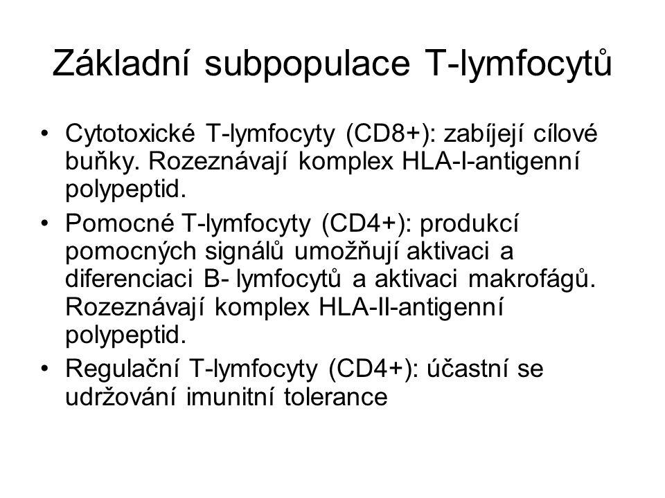 Základní subpopulace T-lymfocytů