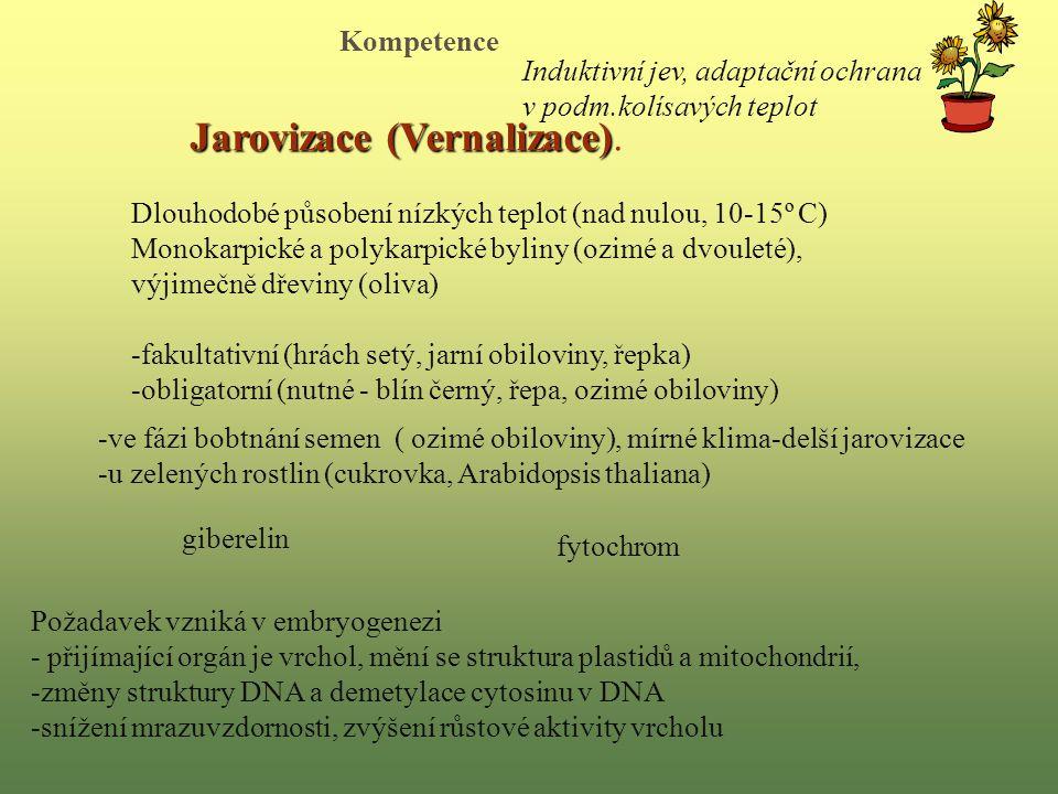 Jarovizace (Vernalizace).
