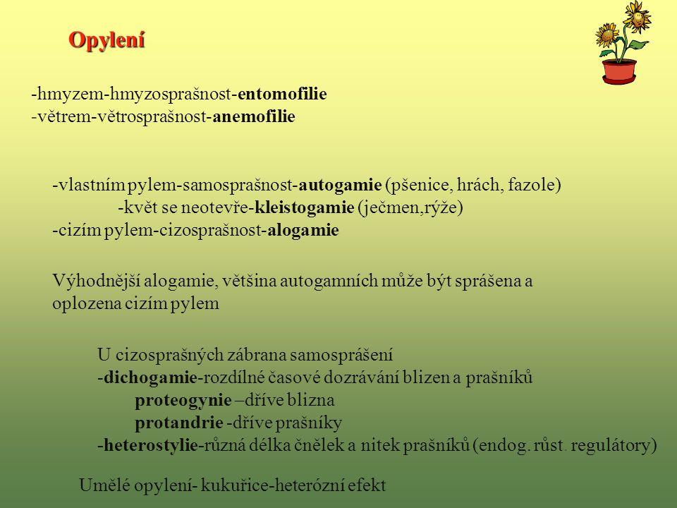 Opylení -hmyzem-hmyzosprašnost-entomofilie