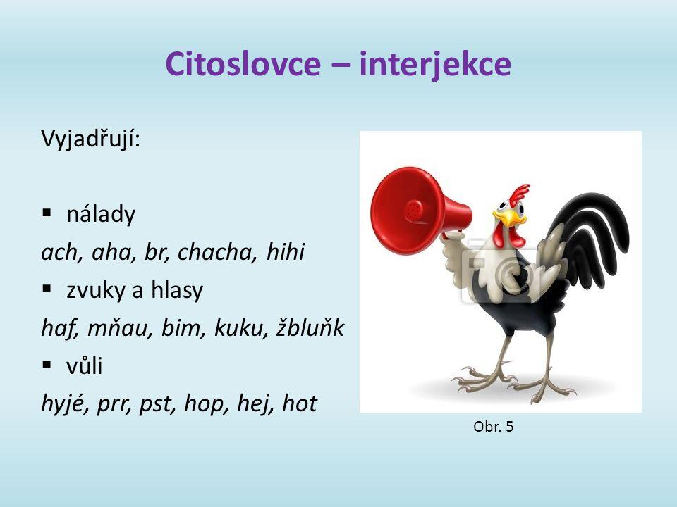 Citoslovce – interjekce
