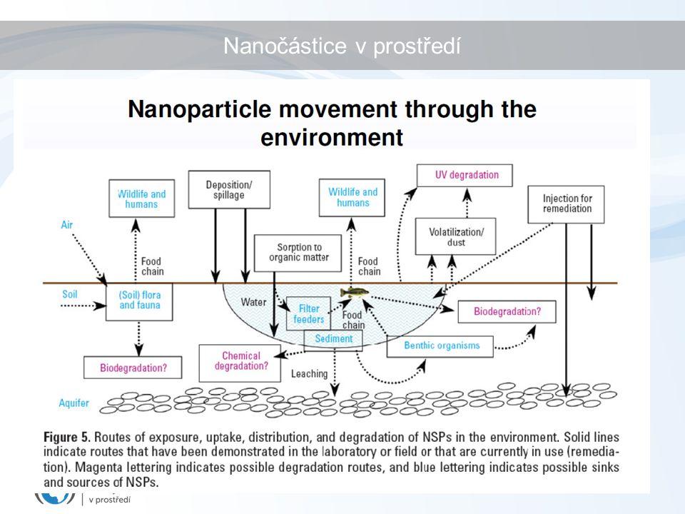 Nanočástice v prostředí