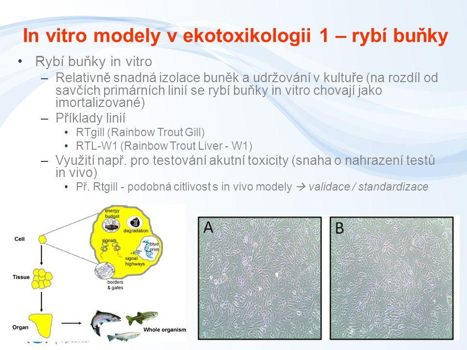 In vitro modely v ekotoxikologii 1 – rybí buňky
