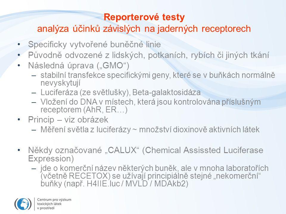 analýza účinků závislých na jaderných receptorech