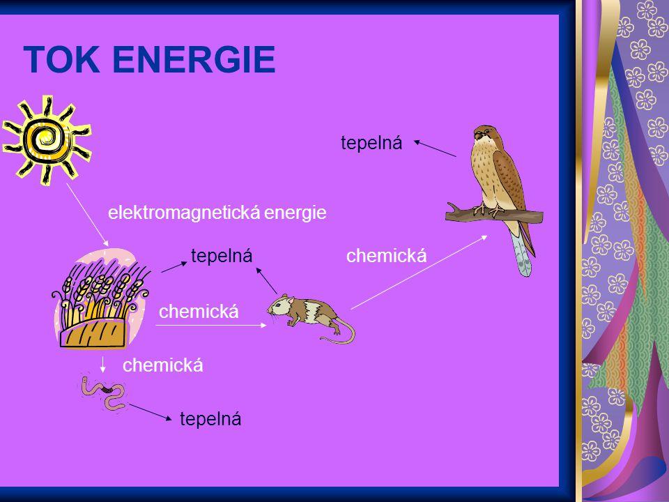 TOK ENERGIE tepelná tepelná chemická elektromagnetická energie
