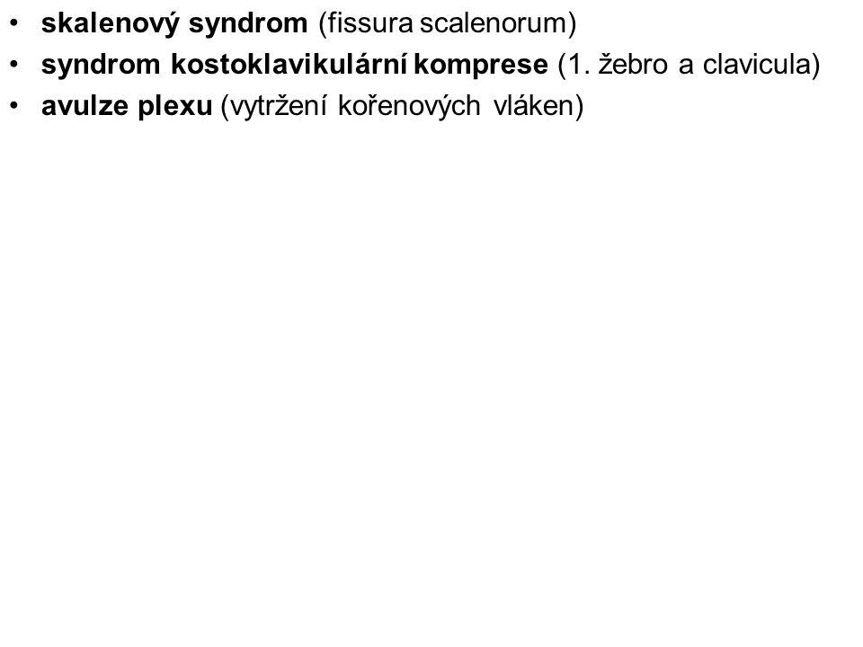 skalenový syndrom (fissura scalenorum)