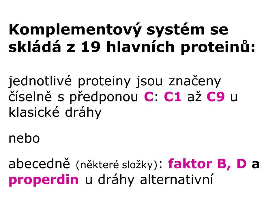 Komplementový systém se skládá z 19 hlavních proteinů: