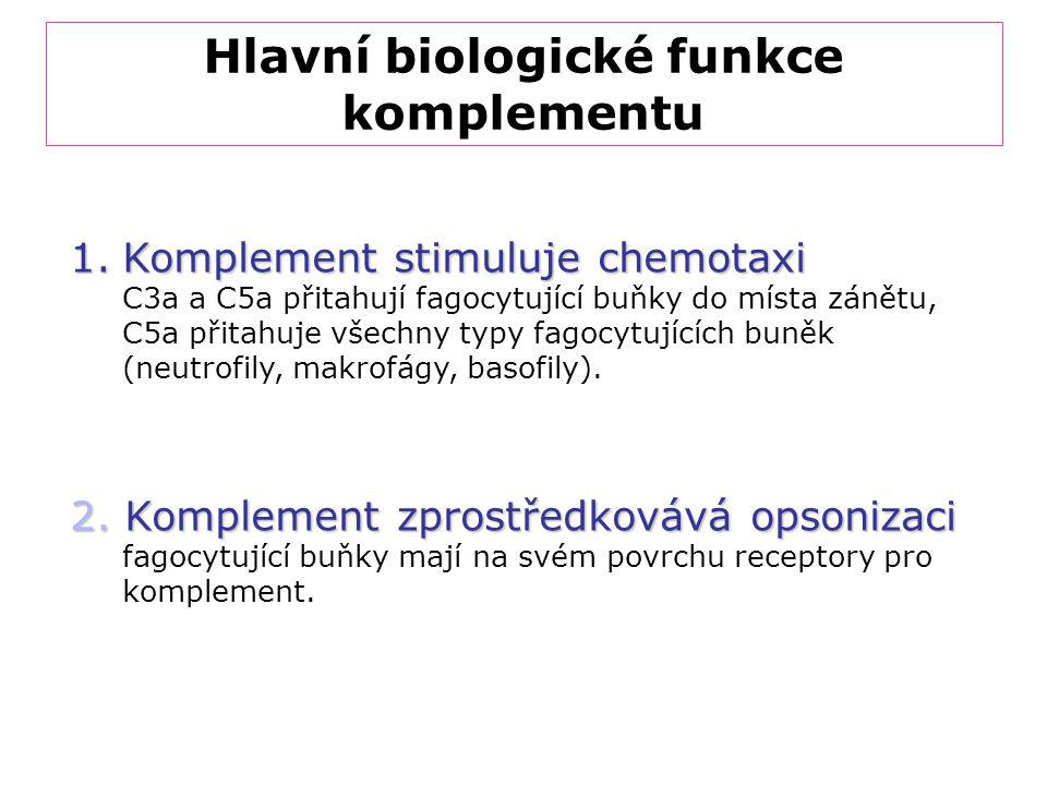 Hlavní biologické funkce komplementu