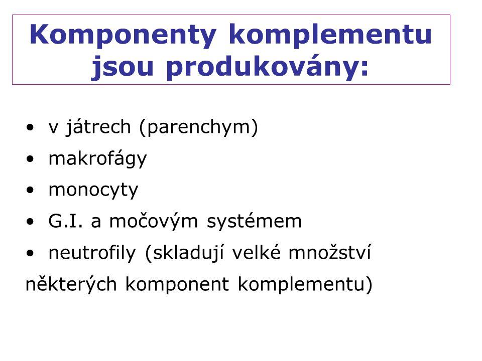 Komponenty komplementu jsou produkovány: