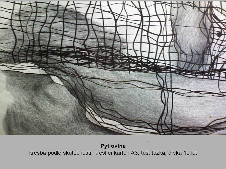 kresba podle skutečnosti, kreslící karton A3, tuš, tužka; dívka 10 let