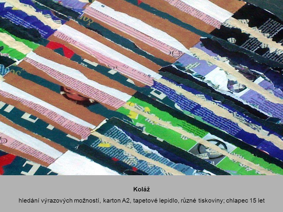 Koláž hledání výrazových možností, karton A2, tapetové lepidlo, různé tiskoviny; chlapec 15 let