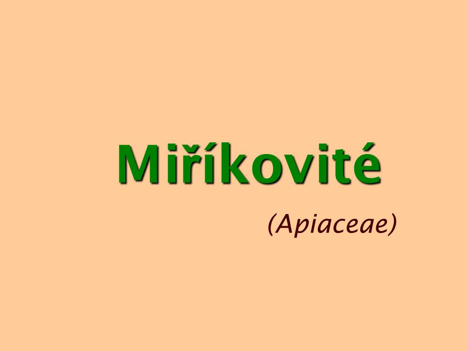 Miříkovité (Apiaceae)