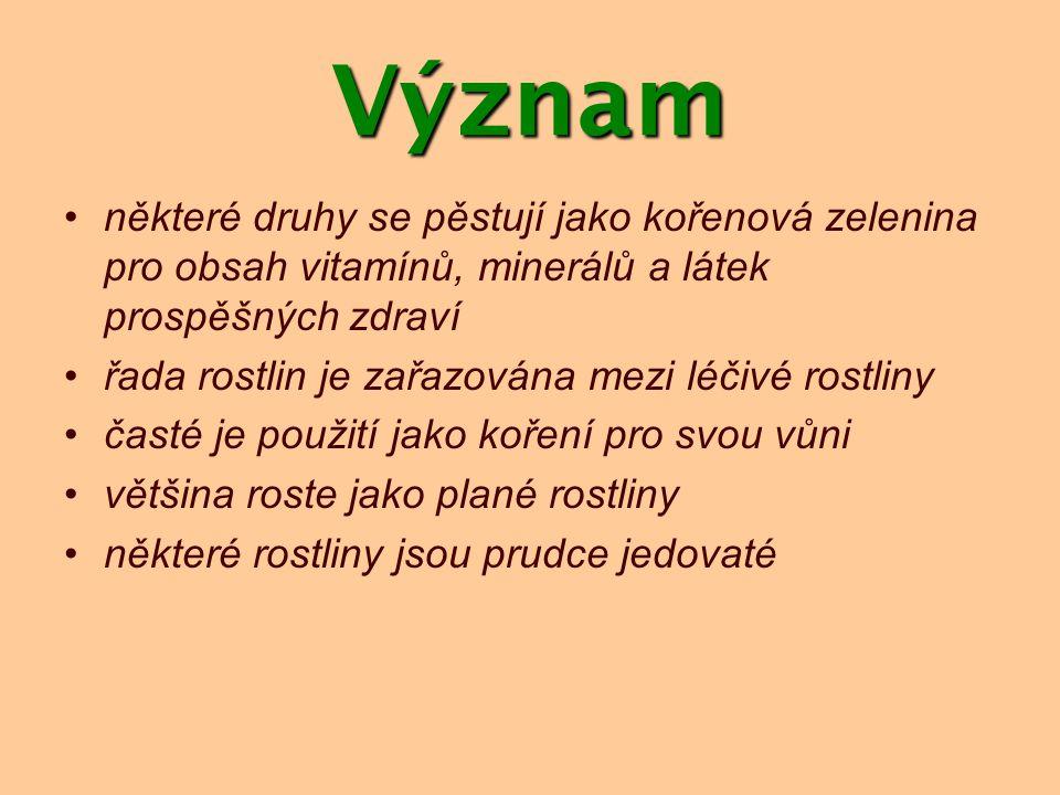 Význam některé druhy se pěstují jako kořenová zelenina pro obsah vitamínů, minerálů a látek prospěšných zdraví.