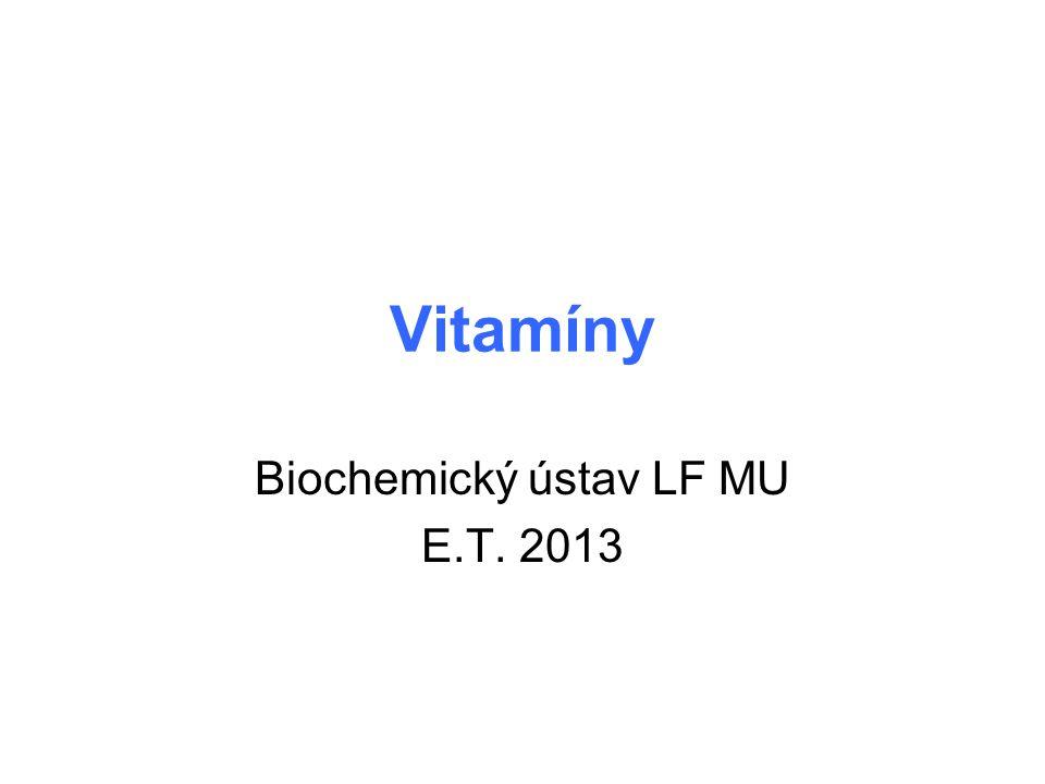 Biochemický ústav LF MU E.T. 2013