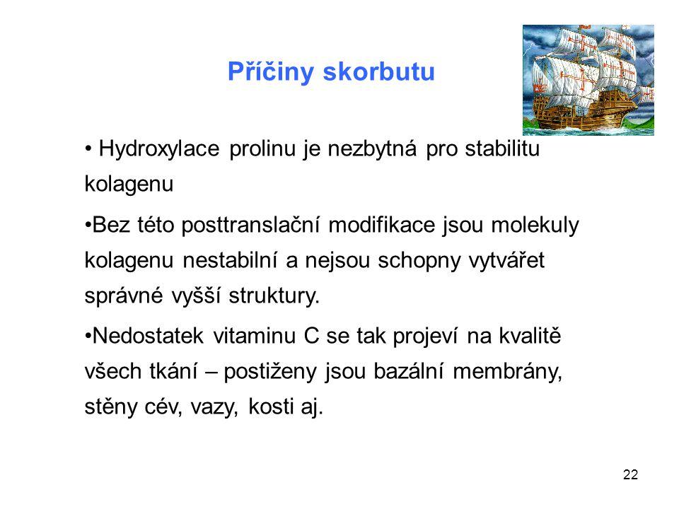 Příčiny skorbutu Hydroxylace prolinu je nezbytná pro stabilitu kolagenu.