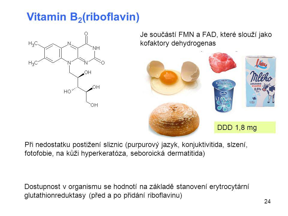 Vitamin B2(riboflavin)
