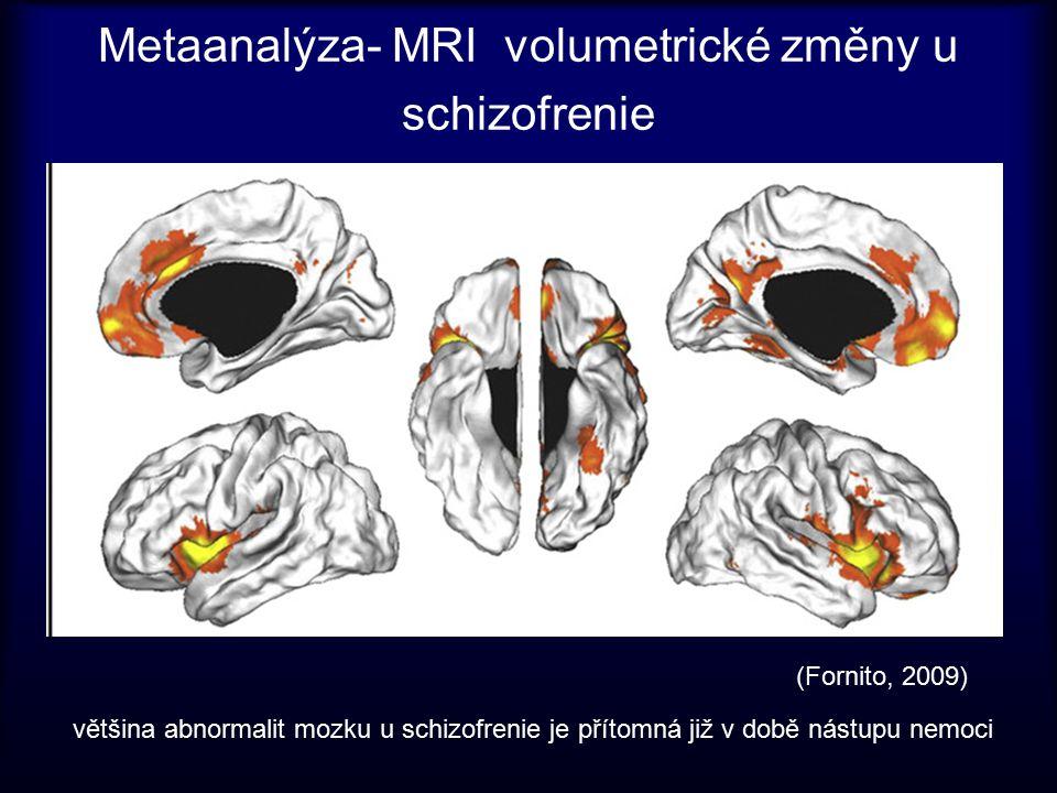 Metaanalýza- MRI volumetrické změny u schizofrenie