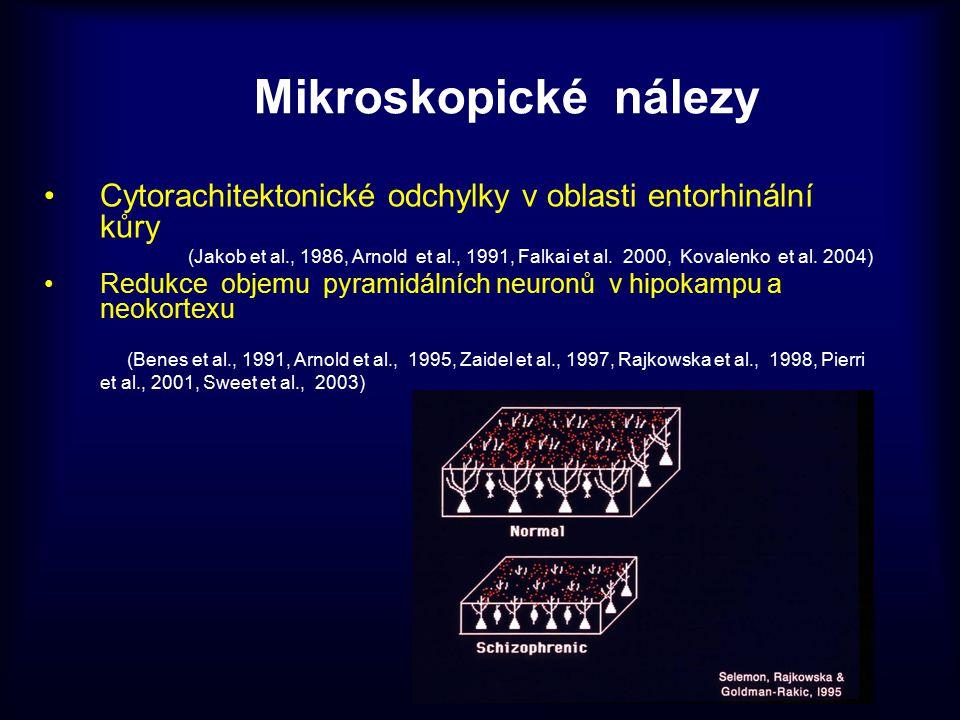 Mikroskopické nálezy Cytorachitektonické odchylky v oblasti entorhinální kůry.