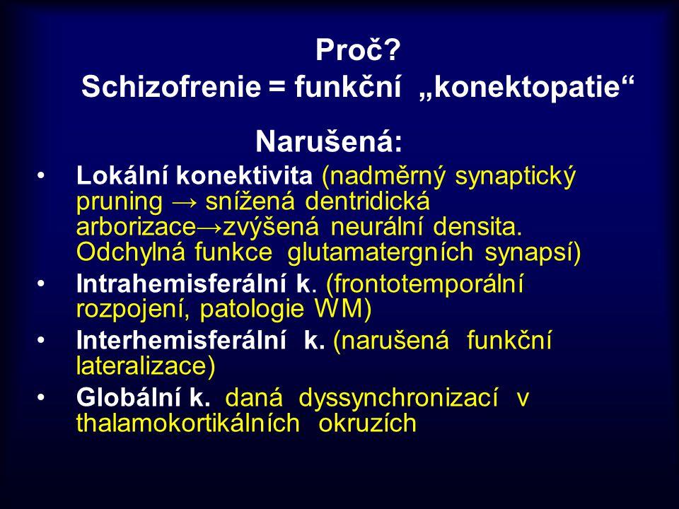 """Proč Schizofrenie = funkční """"konektopatie"""