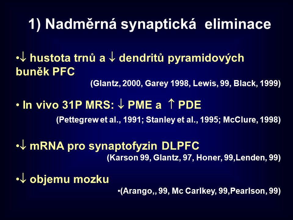 1) Nadměrná synaptická eliminace