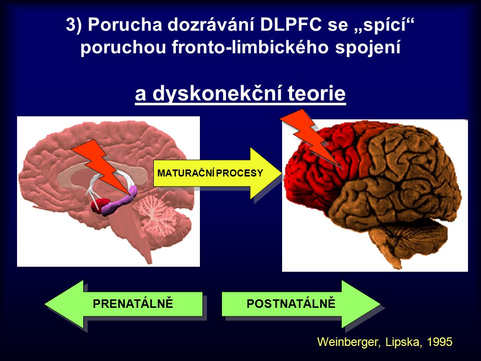 """3) Porucha dozrávání DLPFC se """"spící poruchou fronto-limbického spojení a dyskonekční teorie"""