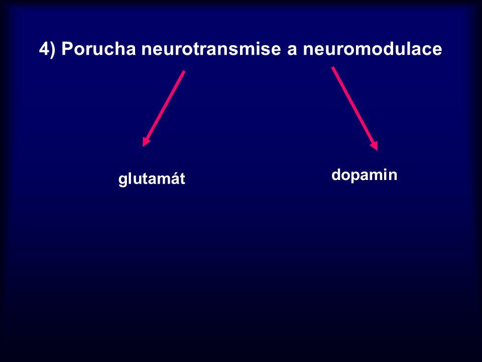 4) Porucha neurotransmise a neuromodulace