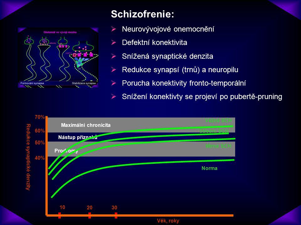 Redukce synaptické denzity