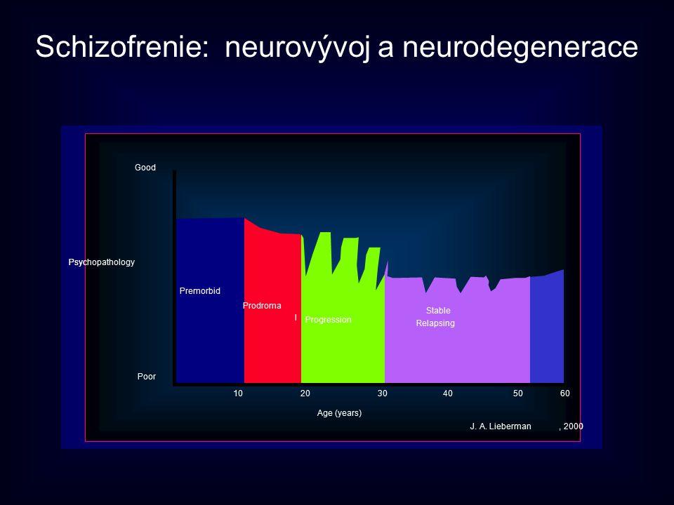 Schizofrenie: neurovývoj a neurodegenerace
