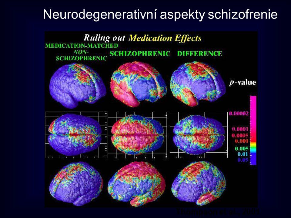 Neurodegenerativní aspekty schizofrenie