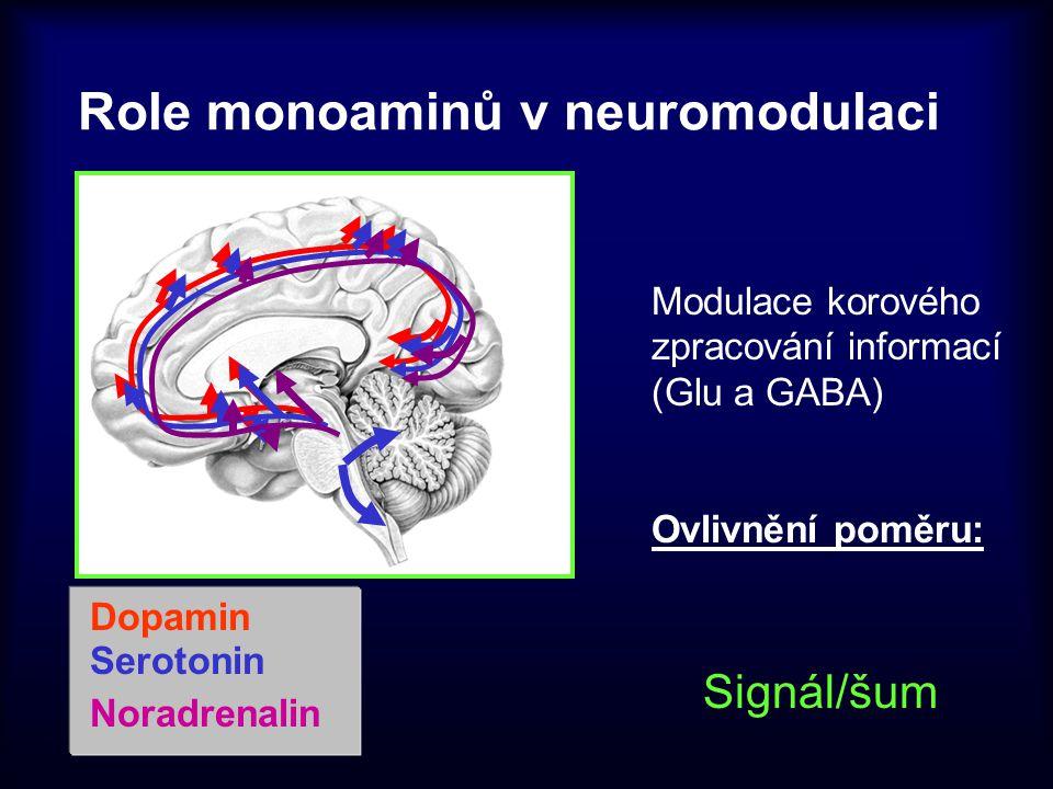 Role monoaminů v neuromodulaci