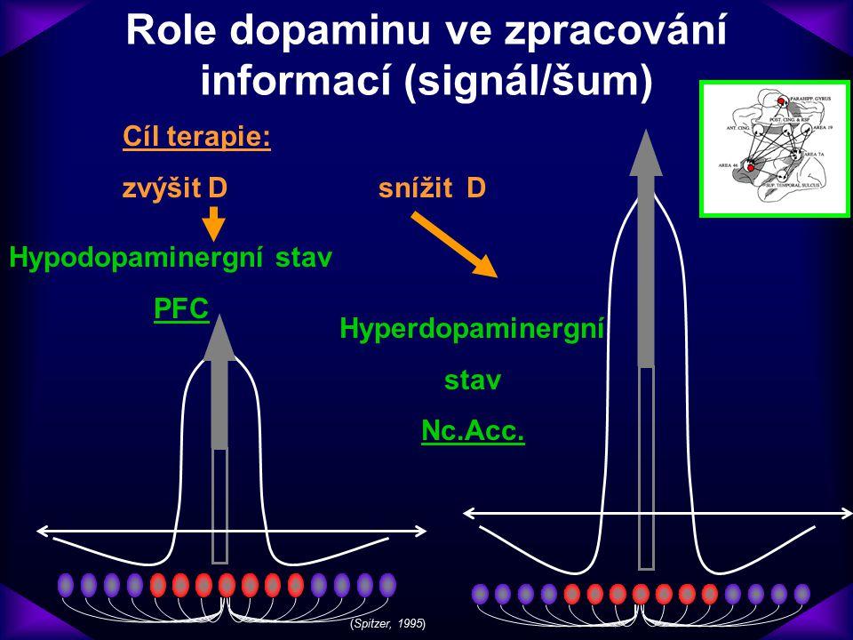 Role dopaminu ve zpracování informací (signál/šum)