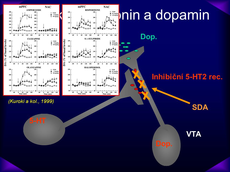 Interakce serotonin a dopamin