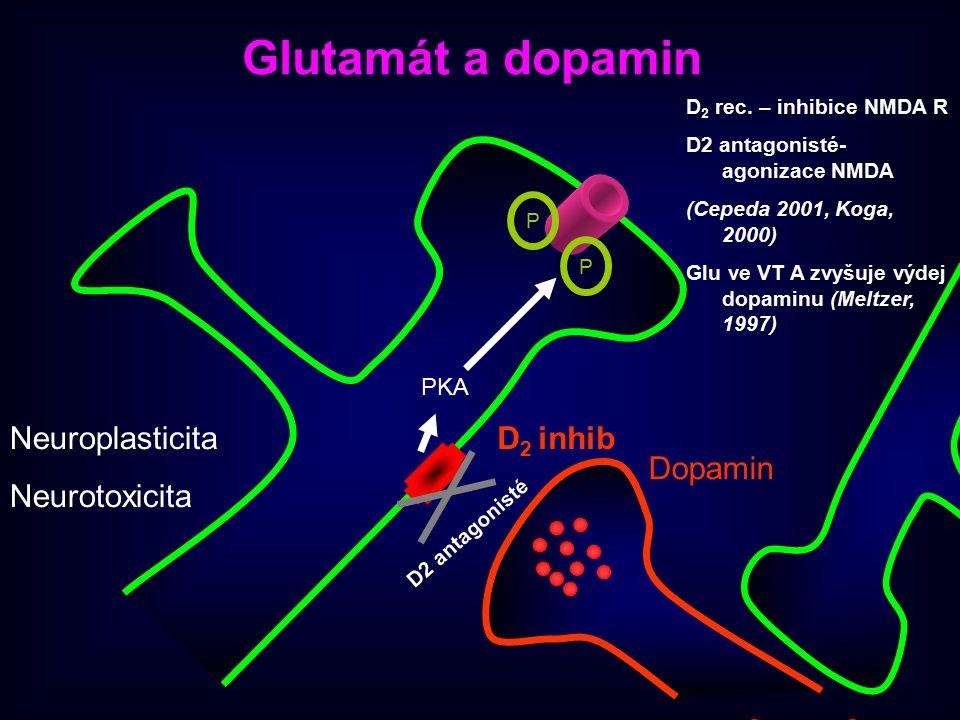 Glutamát a dopamin Neuroplasticita Neurotoxicita D2 inhib Dopamin PKA