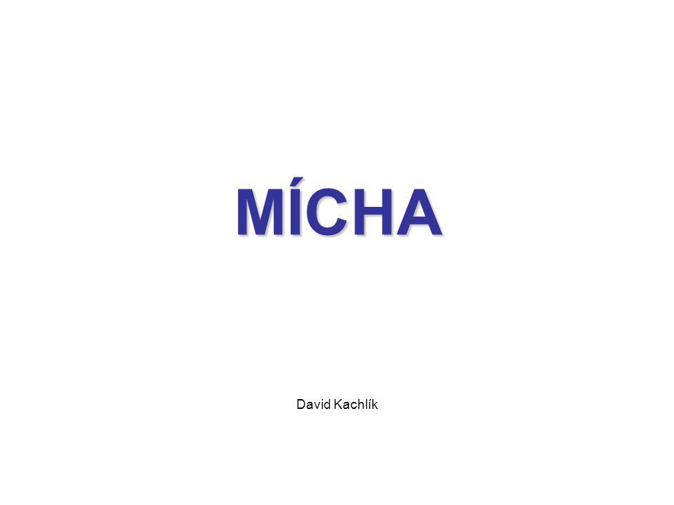 MÍCHA David Kachlík