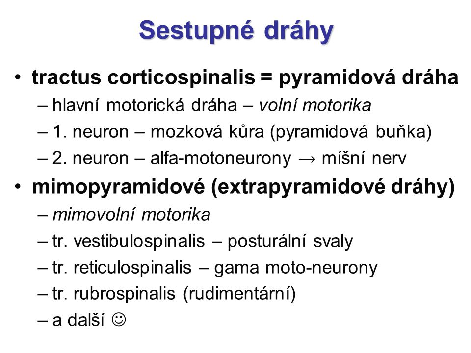 Sestupné dráhy tractus corticospinalis = pyramidová dráha